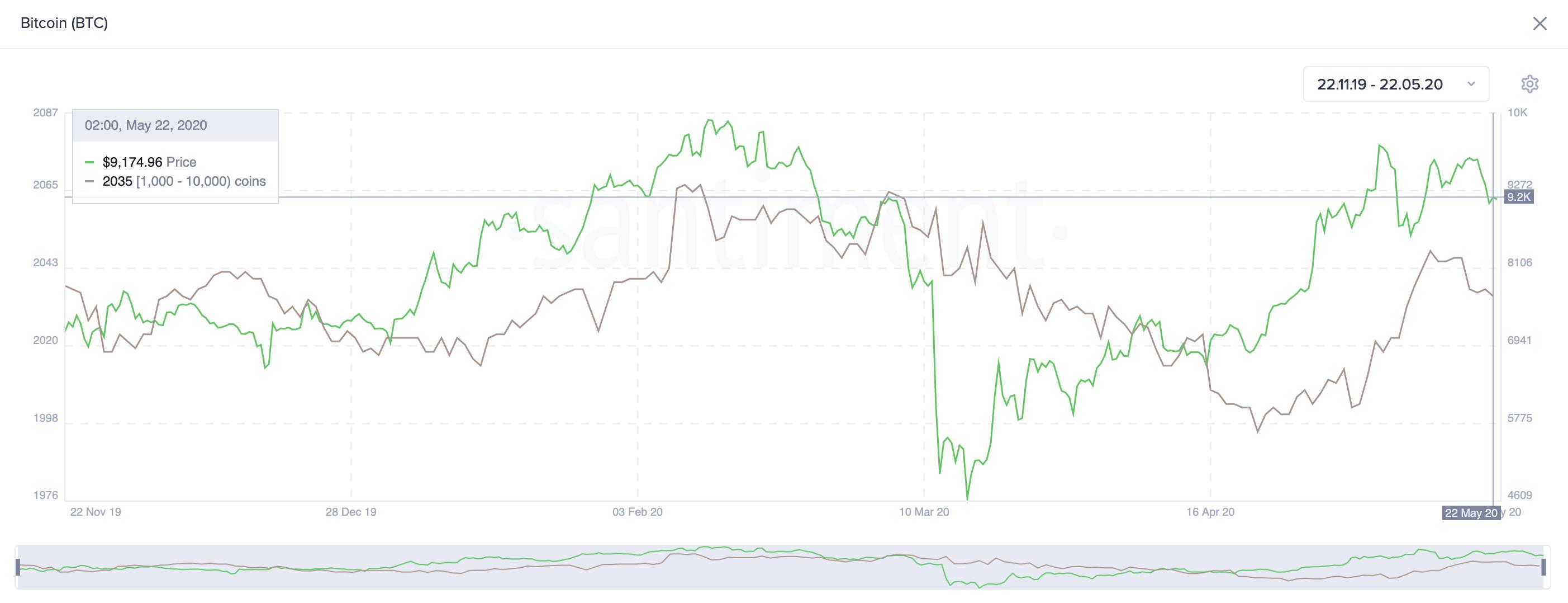 Bitcoin's Holders Distribution. (Source: Santiment)
